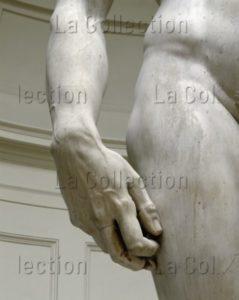 Michel Ange. David. Détail : main droite. 1504. Sculpture. Florence. Galerie de l'Académie.
