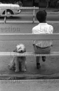 Herschtritt, Léon. L'Homme et son chien II. 1970. Photographie. Collection particulière.
