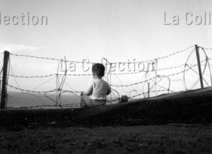 Herschtritt, Léon. Les Gosses D'Algérie. Enfant et barbelés. 1958 1959. Photographie. Coll. Particulière.