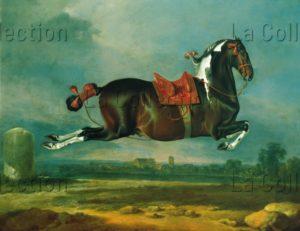 Johann Georg von Hamilton. Cerbero, cheval de race Kladruber à robe brun de Naples. Vers 1721. Vienne. Château de Schönbrunn.