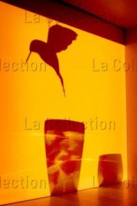 "Maufroid, Caroline. ""Vers 6h Chaque Matin"". 2012. Photographie. Collection Particulière."