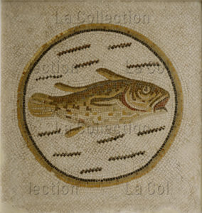 Art romain. Poisson dans un médaillon ayant une valeur prophylactique (qui protège du mal ou de la maladie), dans une mosaïque de seuil. Milieu IIIe siècle. Mosaïque. Sousse, Musée archéologique.