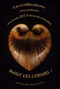 """Gilles Mermet """"Coeur de boeuf"""" / Paris, Muséum National d'Histoire Naturelle"""