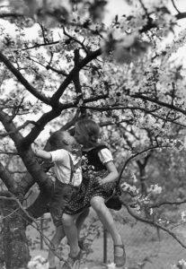 Premier baiser dans un pommier en fleurs. Vers 1930. Photographie. Collection particulière.