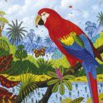 800x600 alain-thomas-paradis-couleurs-12517